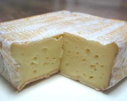 cheese22_2.jpg