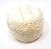 cheese0506_01.jpg