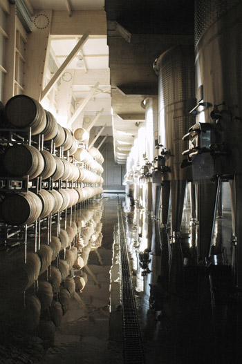 pinot noir winery1.jpg