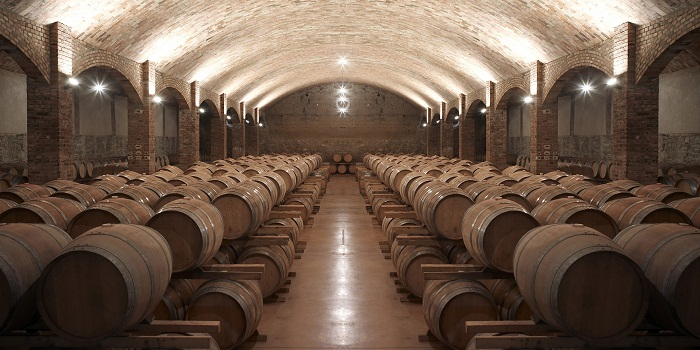 Castell del Remei cellars.jpg